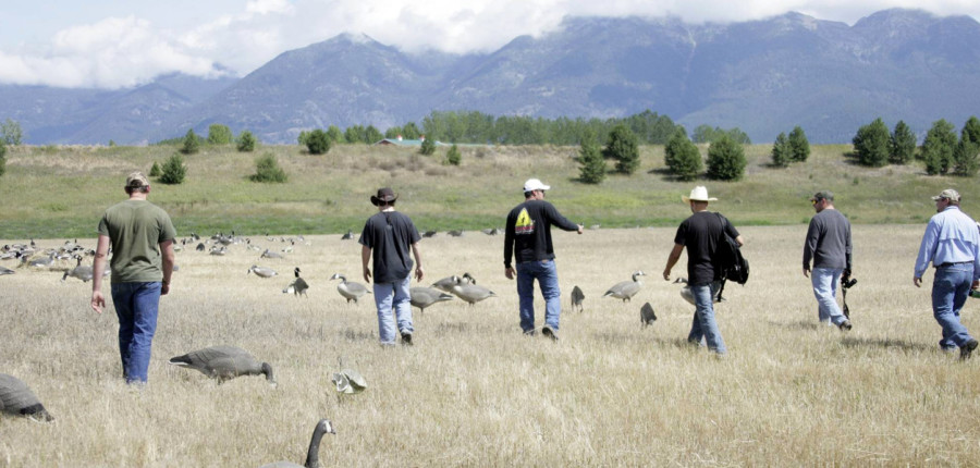 Waterfowl Guide Training